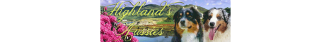 Highlands Australian Shepherd Zucht
