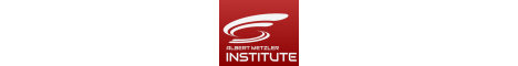 ALBERT METZLER - Institute