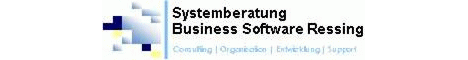 Die Systemberatung Business Software Ressing